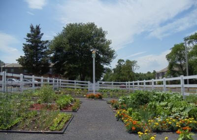 community garden at Willow Shores apartments in Palmyra, NJ